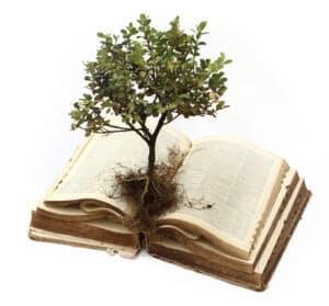 aton-open-book