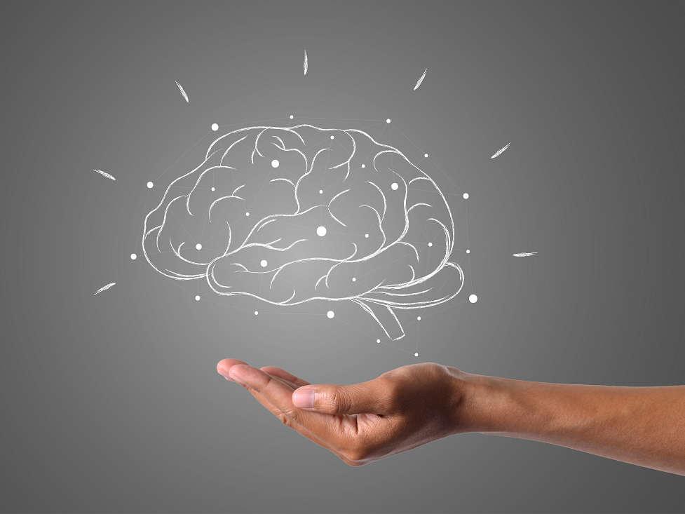 How Do Stimulants Affect the Brain? | Mind | AToN Center